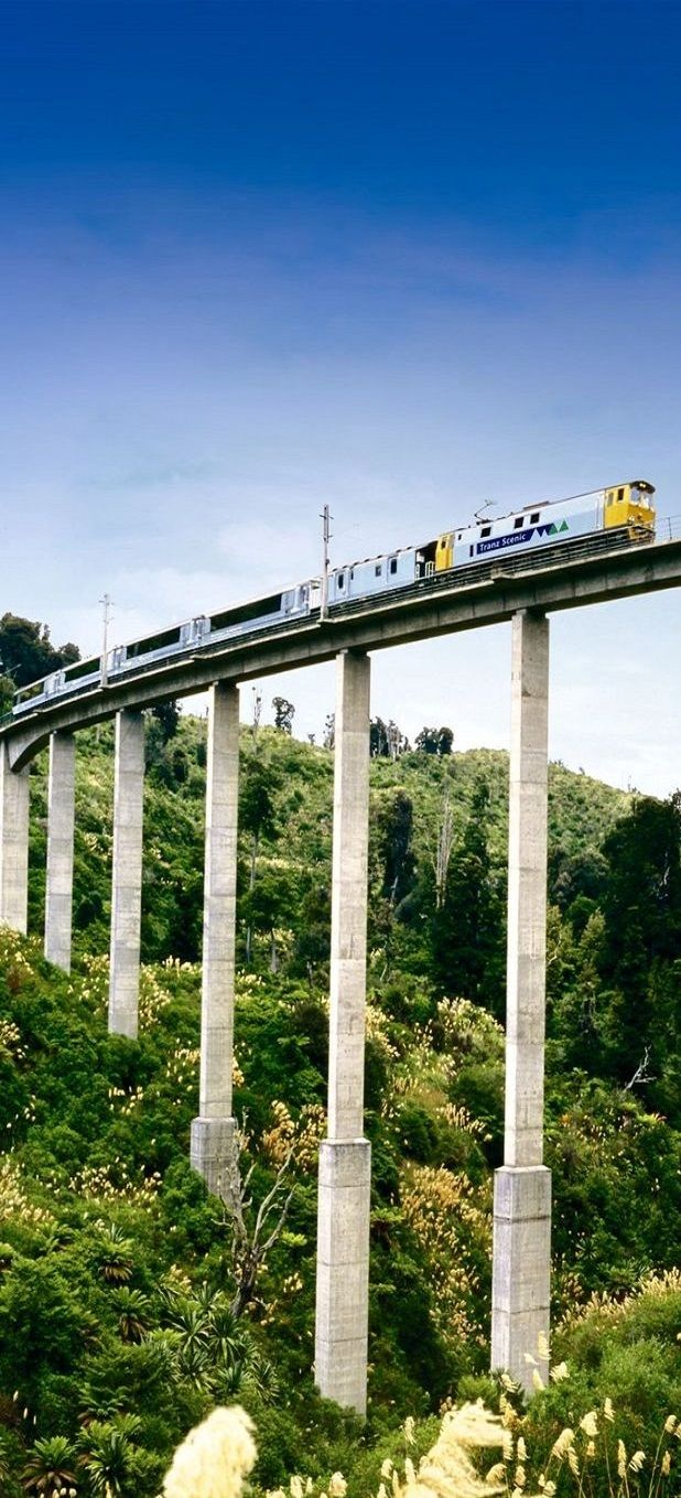 "The Passenger Train ""Overlander"" bewteewn Auckland & Wellington Rtn, crosses many structures. I believe this viaduct is in the Rangatikae Region - NZ"