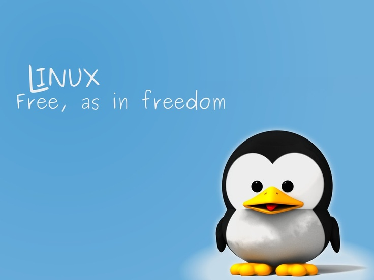 Rappels sur l'historique de commandes Linux