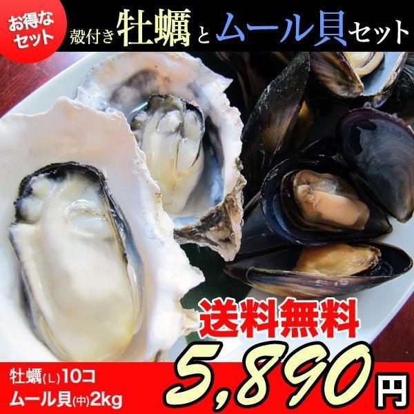 三陸石巻雄勝の浜でとれたプリプリの牡蠣を味わう!       殻付き牡蠣(Lサイズ:200~280g) 10個&ムール貝(Mサイズ)2kg~かき/カキ/ムール貝/産地直送/BBQ