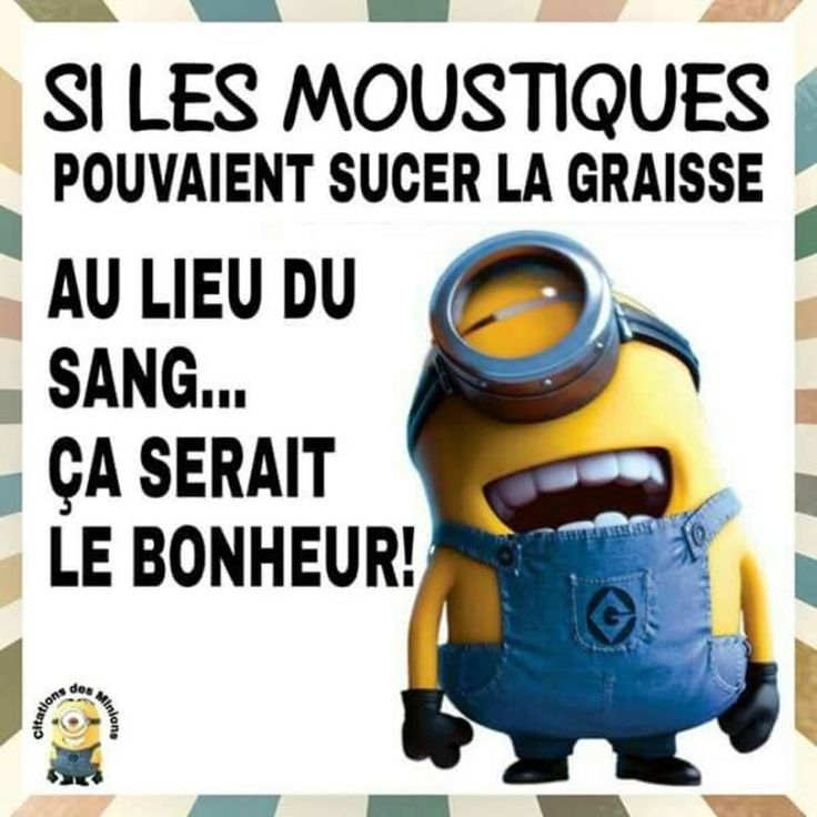 citations petits minions