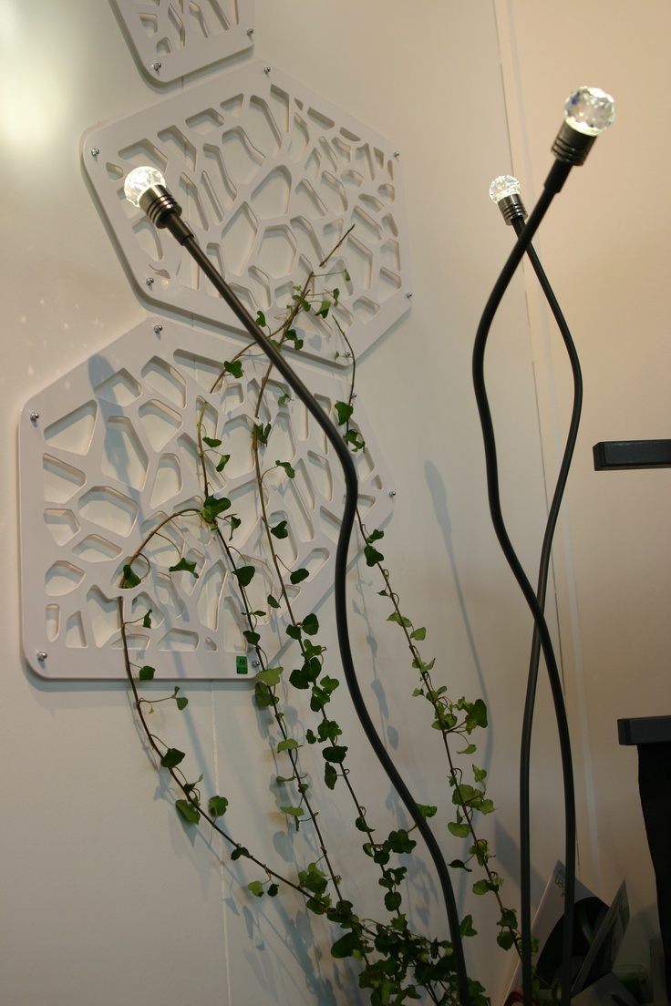 Ramett lamp, with Risott on the wall    La nostra lampada Ramett, con il Risott sul muro