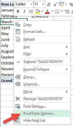 Automatically Refresh a Pivot Table | Excel | Pivot table