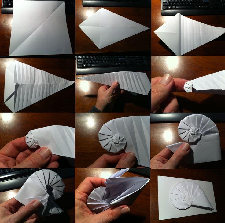 Kağıttan nautilus yapımı