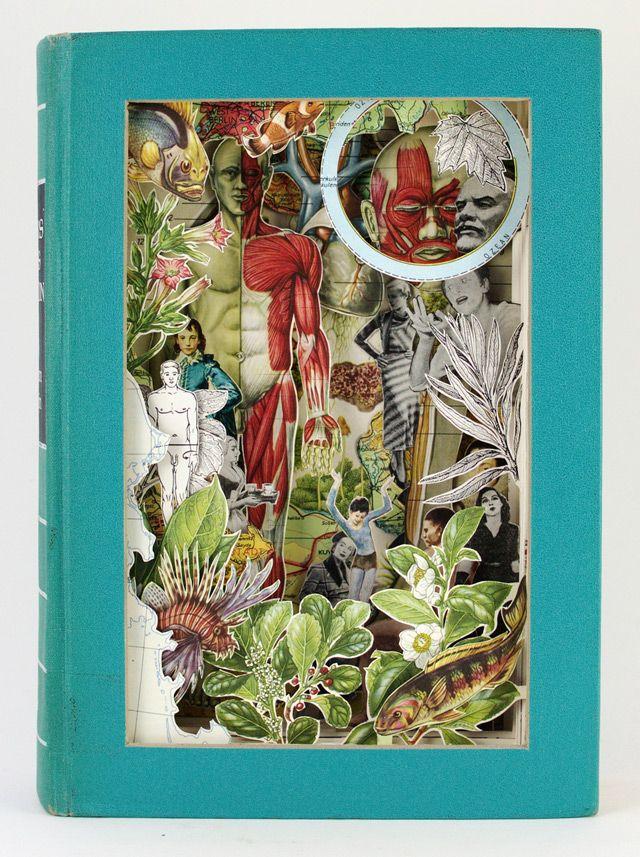 Des livres soulagés de leurs textes livre illustration 08 bonus art