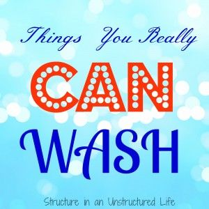 Things You Really CAN Wash - Structure in an Unstructured Life
