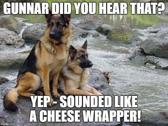 Image Result For German Shepherd Meme Germanshepherd German