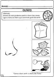 Resultado de imagem para sentido visão atividades
