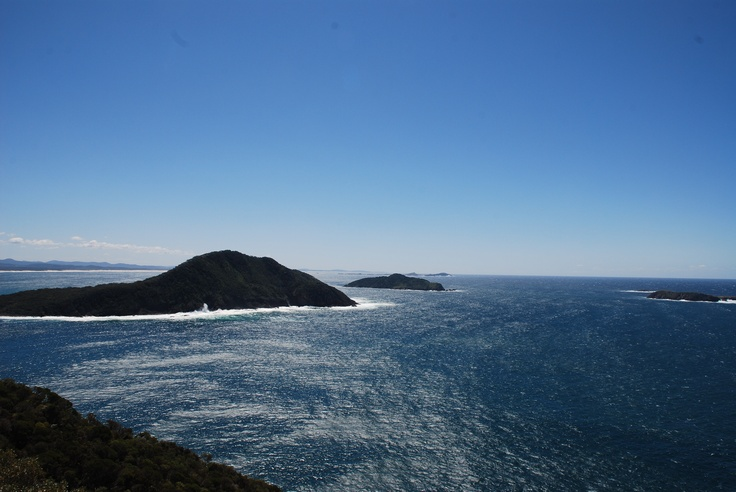 The Tasman sea from the Shoal Bay Summit