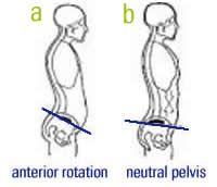 Pelvic alignment