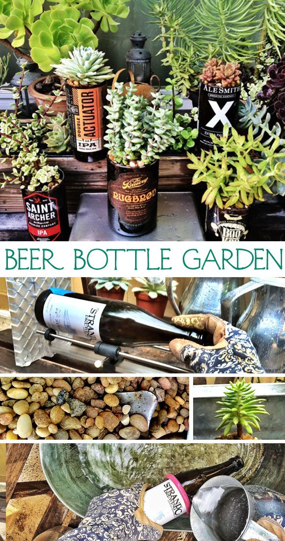 Bruery fan Lena can show you how to turn your #craftbeer bottle collection into a sweet garden. We love what she did with her empty brews and her patio. #crafts #summercamp #beercrafts #diy #bottles #succulents #gardens #blog #thebruery #upcycle #patio #decor #gifts