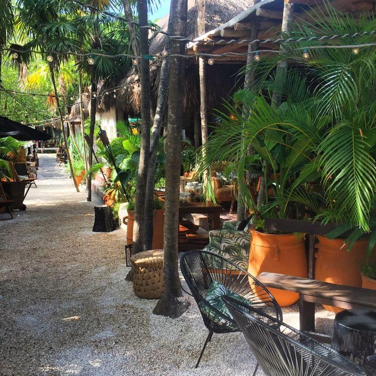 Raul Barreneche: Tulum, Garden Bar, Tulum Mexico