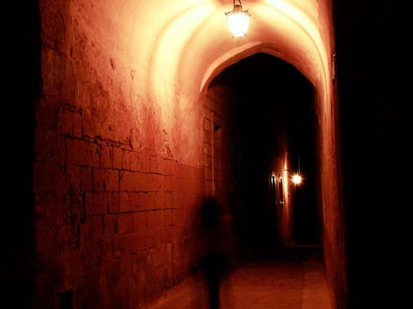 About This Service Provider Learn More The Castle Escape Room Website