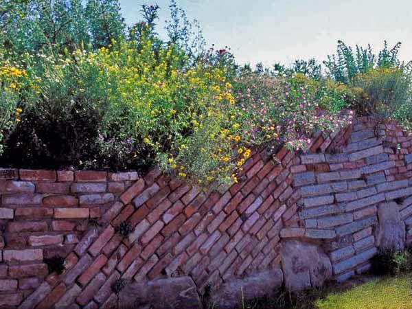 Sichtschutz für Garten und Balkon (Quelle: imago)