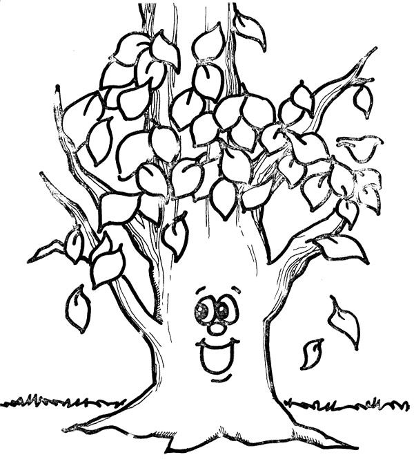 Fall Coloring Page Tree Coloring Pages