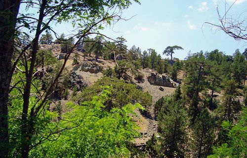 Troodos Mountains, Cyprus | Where to go on holiday in October | http://www.weather2travel.com/holidays/where-to-go-on-holiday-in-october-for-the-best-hot-and-sunny-weather.php #weather #travel