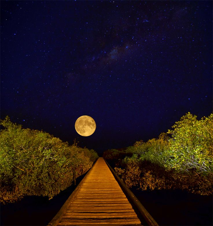 Streeters Jetty and the full moon, Broome
