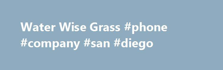 Water Wise Grass #phone #company #san #diego http://ghana.nef2.com/water-wise-grass-phone-company-san-diego/  # Artificial Grass San Diego: Synthetic Lawns Putting Greens WATER WISE GRASS: WHO ARE WE? Water Wise Grass is an experienced, locally owned and operated business servicing the greater San Diego, California area. Our company has 25 years experience and our services include the installation of all types of synthetic grass for all of your landscaping needs: artificial grass lawns…