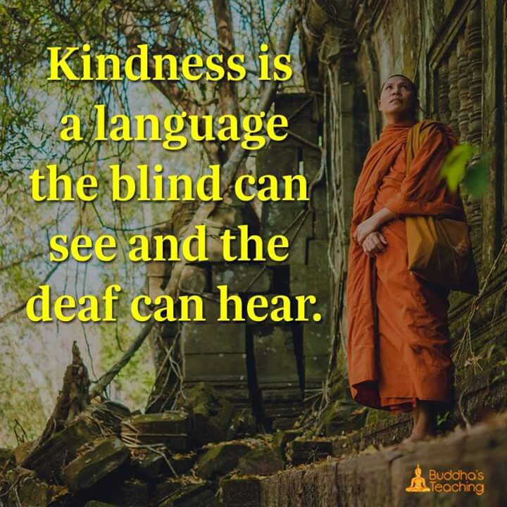 Kindness is a language where blind can see and deaf can hear.