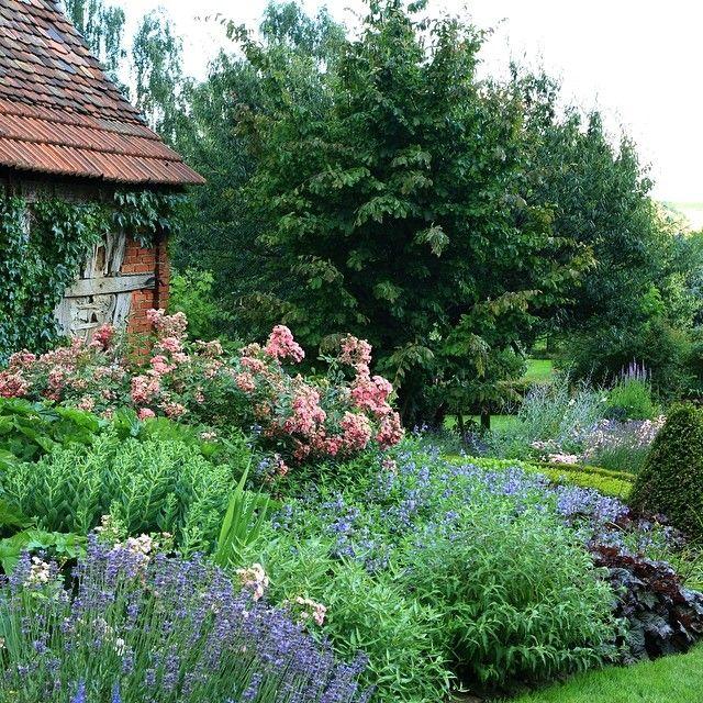 The Daily Blooms On Instagram Jardin Des Quatre Vents In Kutzenhausen France Alsace Garden Landscaping Gardentour Mixedborder Frenchgarden Alsace Fr
