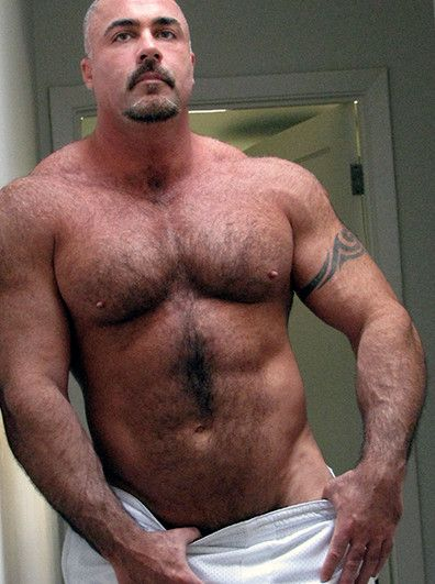 Sex muscle bear men amusing
