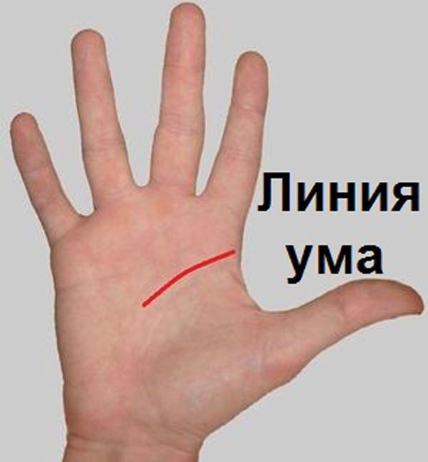 Этот пост позволит вам погадать по руке самостоятельно! | KaifZona.Ru