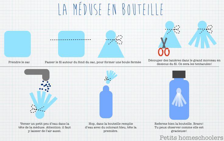 """Réalisation de la bouteille sensorielle """"Méduse"""""""