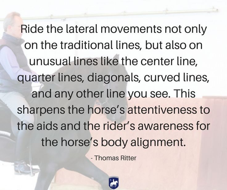 """""""Ride the lateral movements not only on the traditional lines, but also on unusual lines like the center line, quarter lines, diagonals, curved lines, and any other line you see. This sharpens the horse's attentiveness to the aids and the rider's awareness for the horse's body alignment."""" - Thomas Ritter artisticdressage.com"""