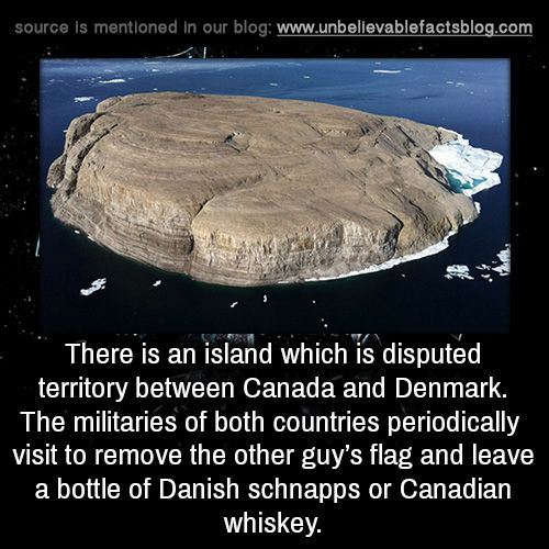 There is an island which is disputed territory between Canada and Denmark. The militaries of both countries periodically visit to remove the other guy's flag and leave a bottle of Danish schnapps or Canadian whiskey.