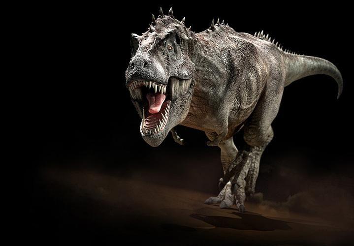 Tyrannosaurus rex.  The ultimate boss of the animal world.