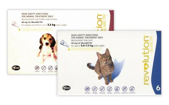REVOLUTION Flea & Heartworm Treatment for Cats