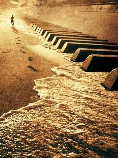 My two loves....The ocean music T Bucket list - learning to play the piano get more only on http://freefacebookcovers.net