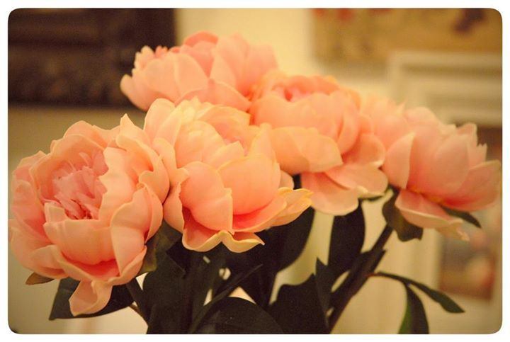 Pretty pink peonies. Spring can't get here soon enough!