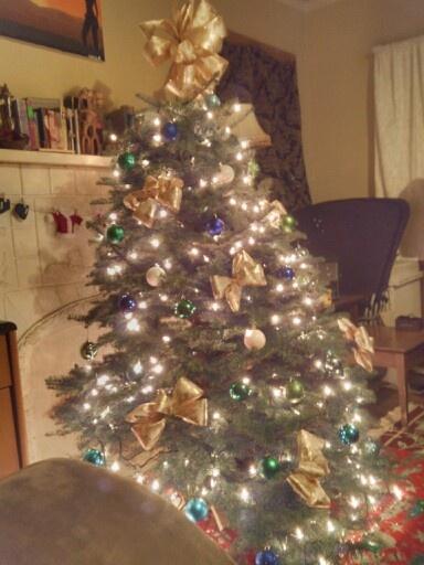 Tree last year