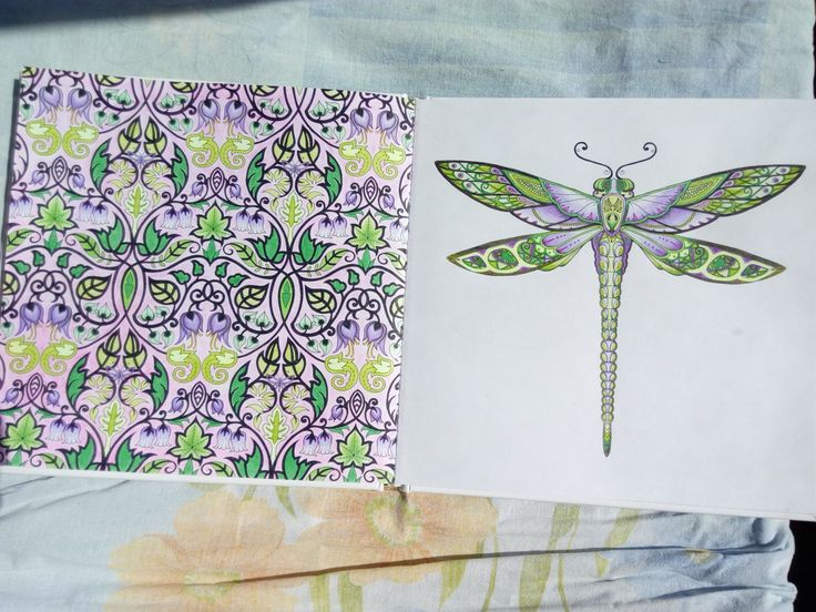 Dragonfly And Symbol Enchanted Forest Coloring BooksColouringJohanna