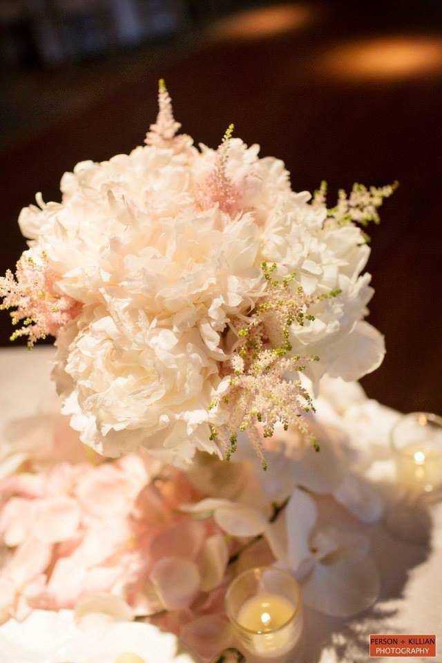 Boston Wedding Photography Boston Event Photography Soft White