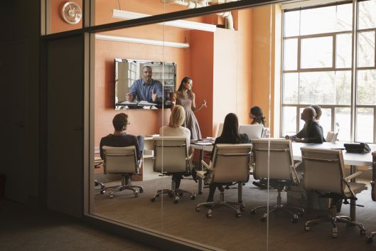 Sequoia invests $100 million in Zoom video conferencing service