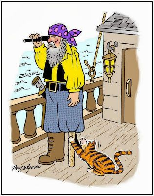 Funny pirate ship cat joke cartoon picture wooden leg scratch post