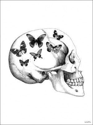 Poster VANILLA FLY - Skull With Butterfly