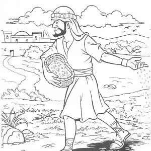 Best 25+ Parable of the sower for kids ideas on Pinterest