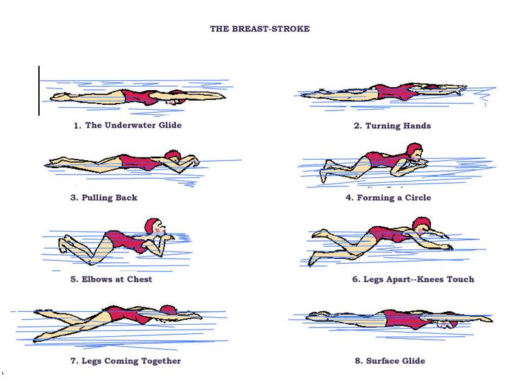 swimming breaststroke | Breaststrokes Technique – Essential Basic Things You Need To Know