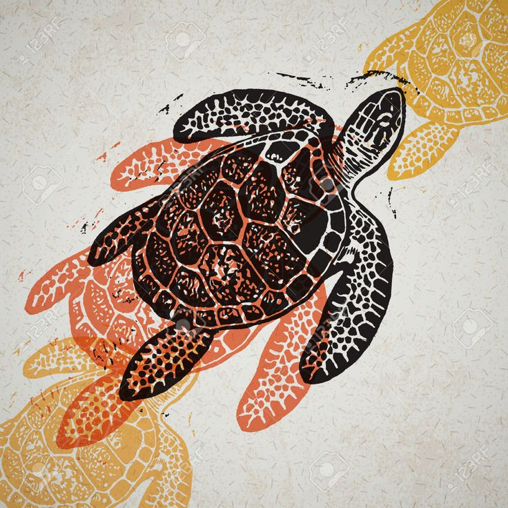 Resultado de imagen para tortuga marina dibujo realista
