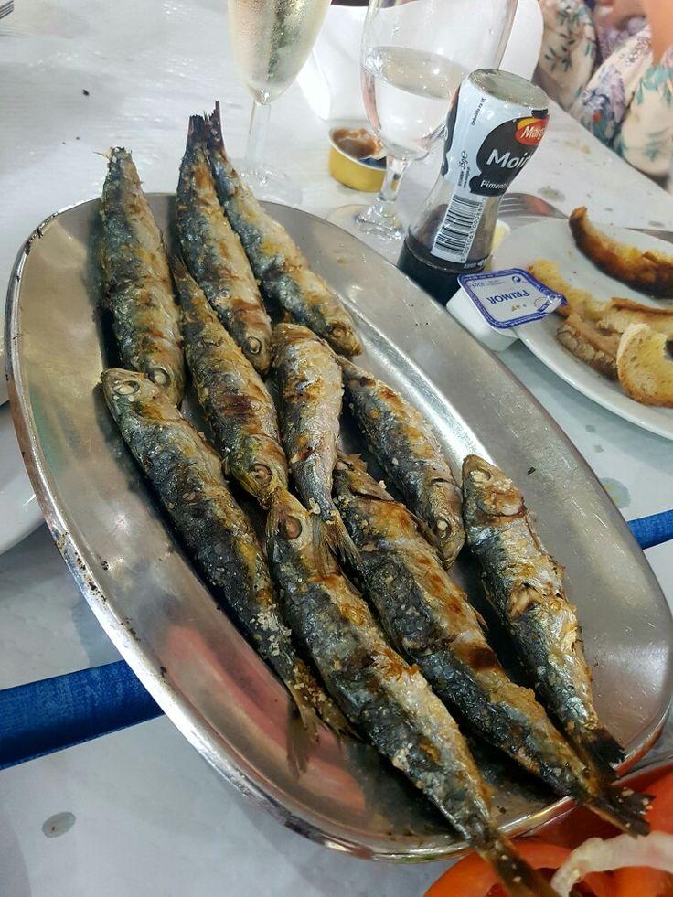 Portuguese sardines.  SARDINHAS. club de pesca Albufeira. Higly recommended