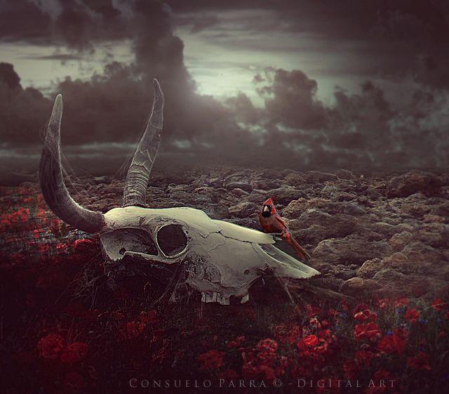 S o l i t u d e by Aeternum-Art on DeviantArt