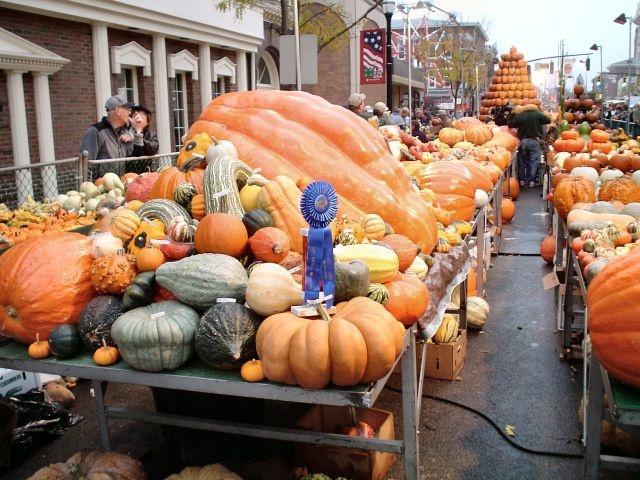 Circleville Pumpkin Festival  Circleville, OH