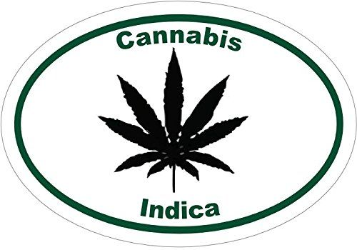 Marijuana Decal - Cannabis Indica Marijuana Vinyl Sticker - Marijuana Bumper Sticker - Weed Sticker - Perfect Marijuana Lovers Gift - Made in the USA //Price: $9.99 & FREE Shipping //     #cannabisgrowing