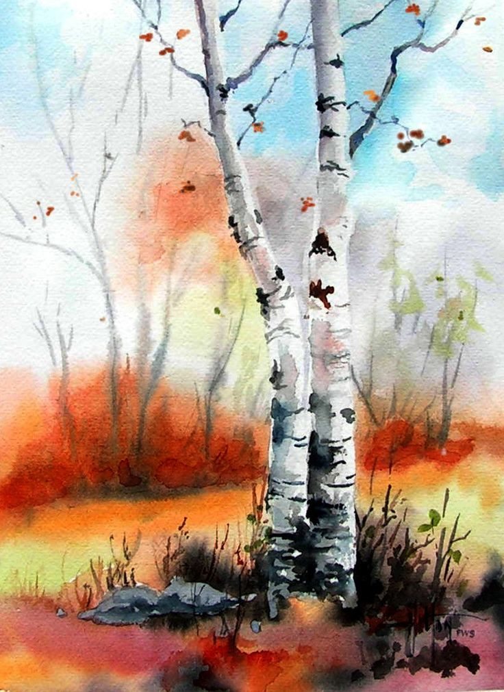 "Watercolor by Philip Hilton. The white birches stand out against the warm autumn colors in this original watercolor ""Autumn Birches"" 