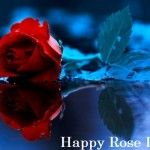 Happy Rose Day Gif Images for Husband & Wife