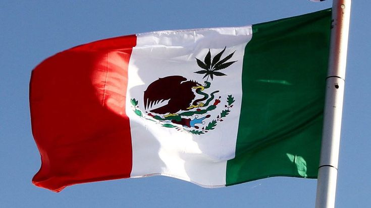 """Mexico's lawmakers have overwhelmingly passed a bill to legalize the medical use of marijuana. According to Reuters, the bill sailed through the Senate in December, passed the Lower House of Congress on Friday, and will now be sent to President Enrique Pena Nieto, who is expected to sign it. """"The ruling eliminates the prohibition and … Continue reading »"""