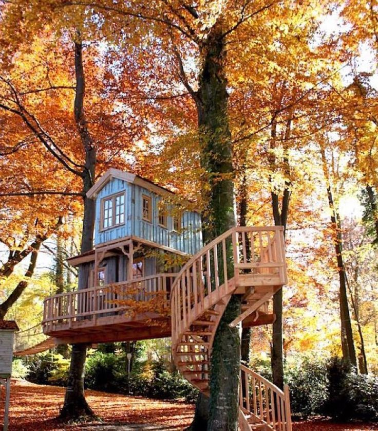 at the banks of a lake south of munich we built this two story treehouse supported by five beech trees it offers a wonderful view across the water all the - Two Story Tree House Plans