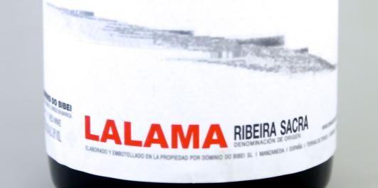 VELDIG GODE KJØP: Blant de ti beste rødvinene under 200 kroner, finner vi en nykommer fra Galicia.